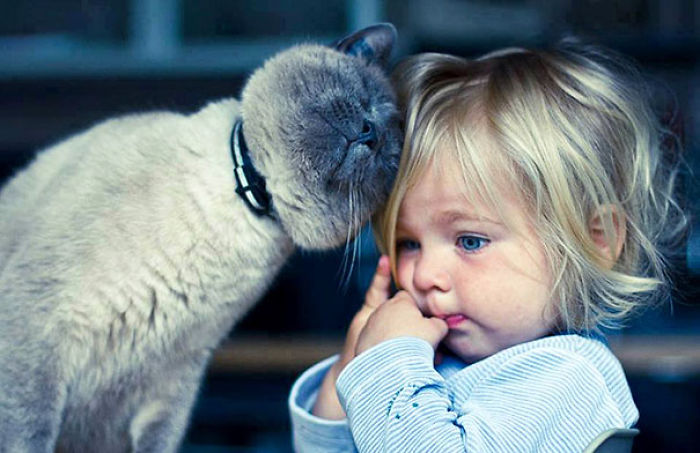 why kids need pets (6)